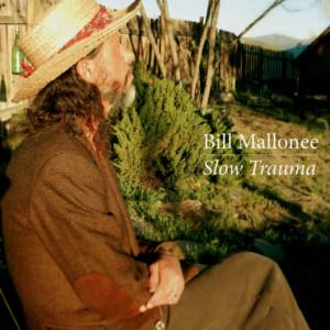 Bill Mallonee Slow Trauma